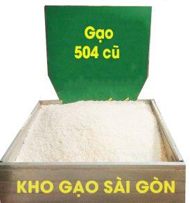 gạo 504 cũ