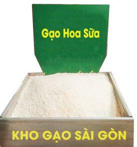 Gạo Hoa Sữa