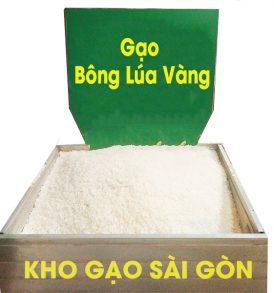 gạo đặc sản bông lúa vàng