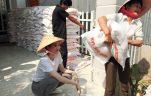 gạo làm từ thiện