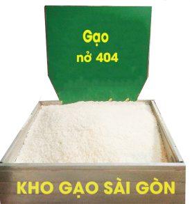 gạo nở 404